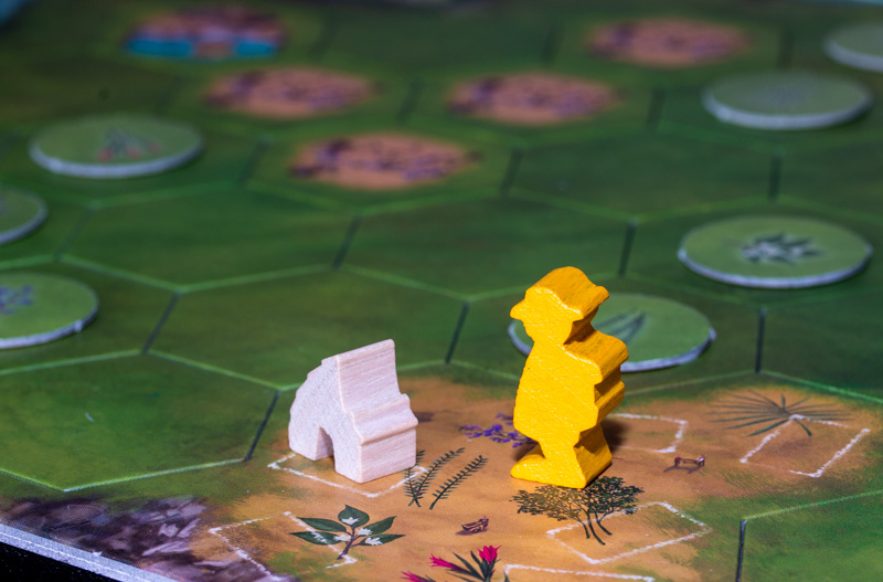 Rise of Queensdale Meeple